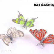 Kit papillon 1 presentation w