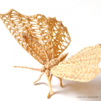 Papillon 3d bois img01